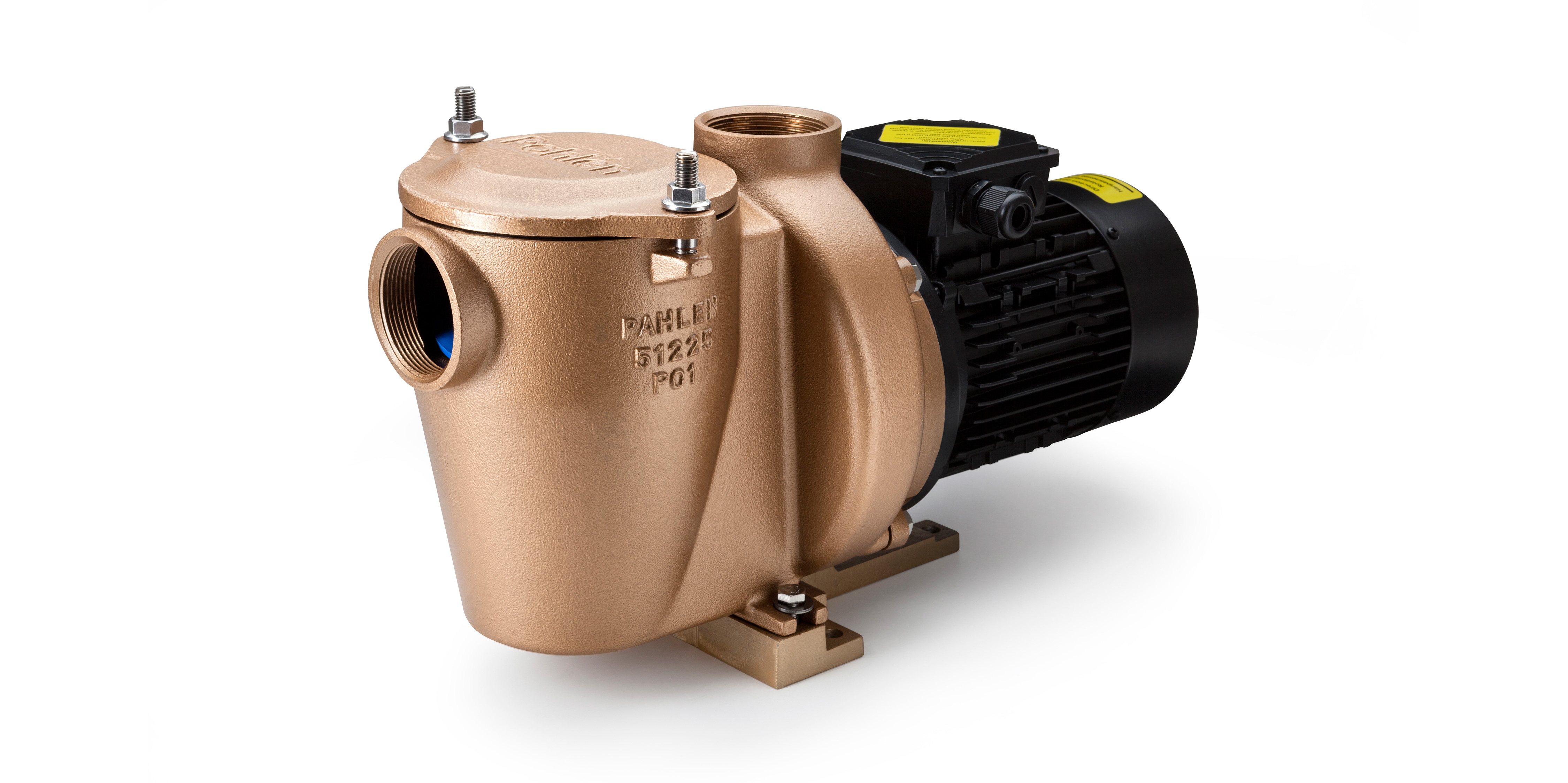 High-quality bronze alloy swimming pool pump P01 – Pahlen
