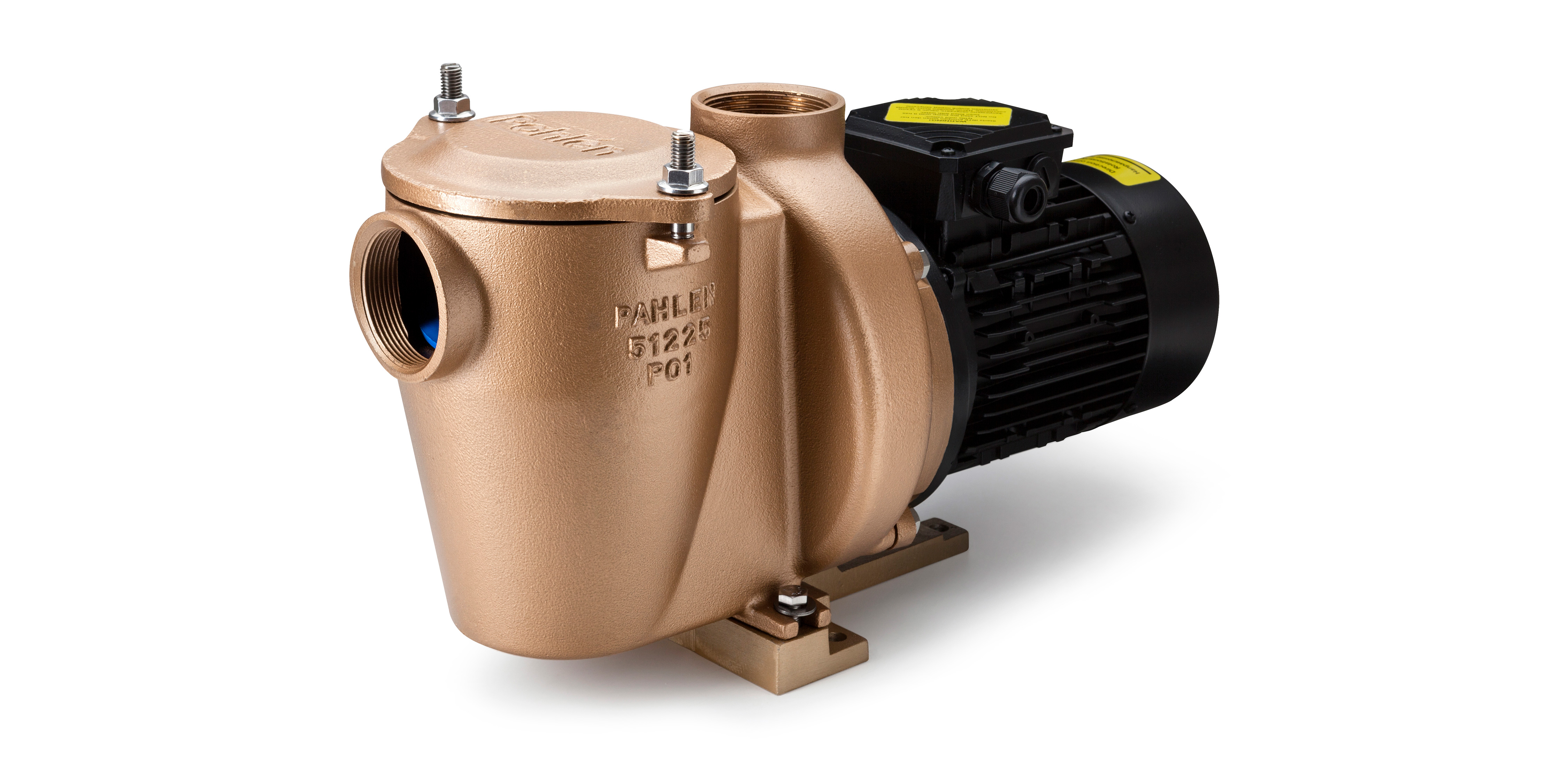 High Quality Bronze Alloy Swimming Pool Pump P01 Pahlen